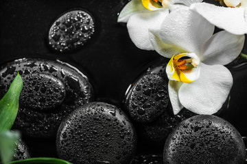 top view of spa setting of white orchid (phalaenopsis) and black zen stones with drops in water