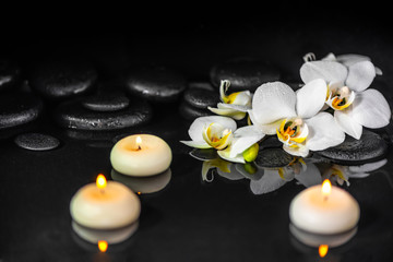 spa concept of white orchid (phalaenopsis), candles and black zen stones with drops on water with reflection
