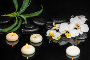 spa setting of white orchid (phalaenopsis), candles, greens and black zen stones with drops on water with reflection