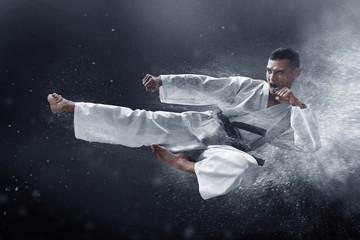 Martial arts karate kick