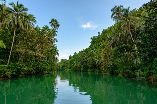 Tropical jungle river in the forest. Philippines