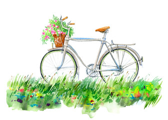 Bicycle and basket on a flowers meadow.Summer picture. White background.Watercolor hand drawn illustration.