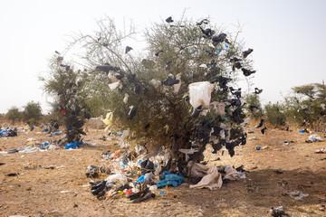 plastic pollution in Senegal