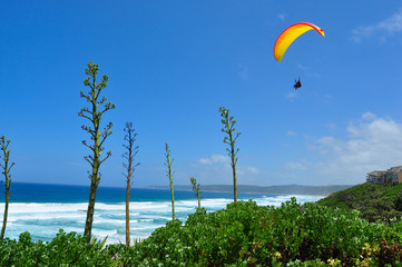 Paragliding over the beach