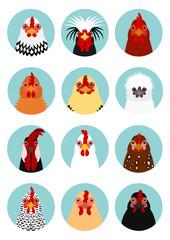 chicken heads set