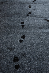 footprints in the black sand