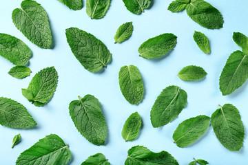 Fototapeta Mint leafs on blue background obraz