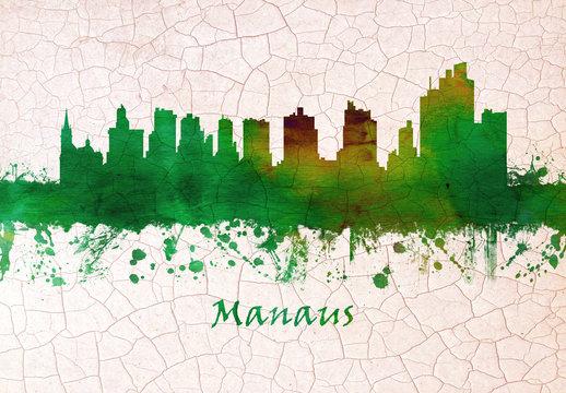 Manaus Brazil skyline