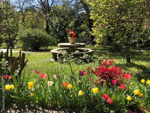 paysage jardin fleuri \
