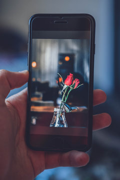 Phone with a photo of flowers in a bottle in the night