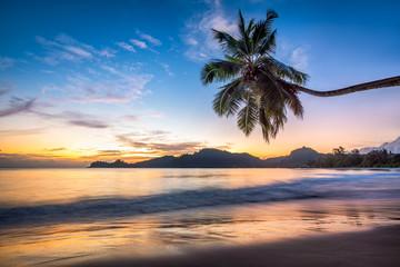 Wall Mural - Sonnenuntergang am Strand auf einer tropischen Insel