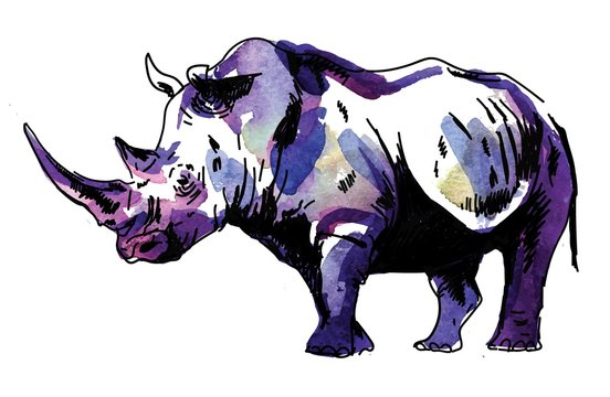 Rhinoceros. Drawing by hand in vintage style. Texture watercolor paint. Freehand drawing.