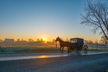 Amish Horse and Buggy at Dawn with Sun Rising on Horizon