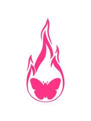 pink schmetterling flamme brennen feuer heiß silhouette insekt flügel fliegen frühling schön hübsch logo design cool