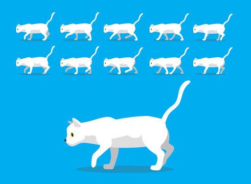 Animal Animation Sequence White Cat Cartoon Vector