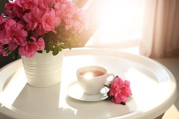 Aluminium Prints Azalea Pot with beautiful blooming azalea and cup of tea on table
