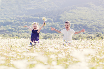 Lovely little children in the field of daisies. the boy gives the girl a bouquet