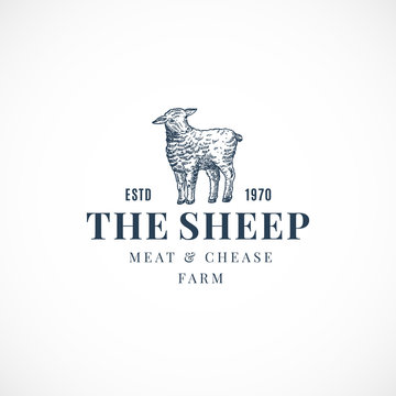 The Sheep Abstract Vector Sign, Symbol or Logo Template. Hand Drawn Lamb Sillhouette with Retro Typography. Vintage Luxury Vector Emblem.