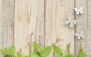 Foto auf Leinwand Schmetterlinge im Grunge srpingtime background with border of green leaves and wooden butterfly