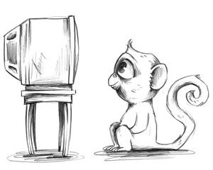 Junger Affe schaut aufmerksam Fernsehen