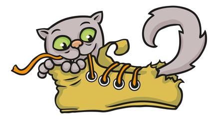 Katze spielt in einem vom Spielen kaputten Schuh