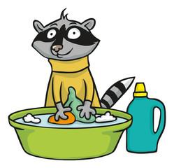 Waschbär wäscht fröhlich seine Kleidung in Wanne