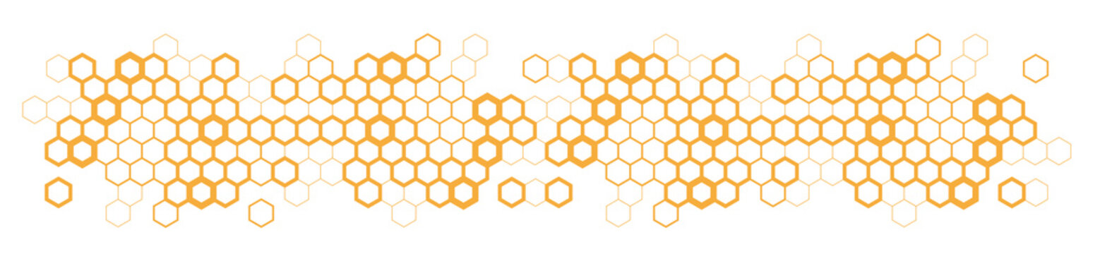 Hexagons / honeycomb