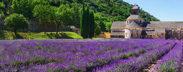 Sénanque Monastery - France