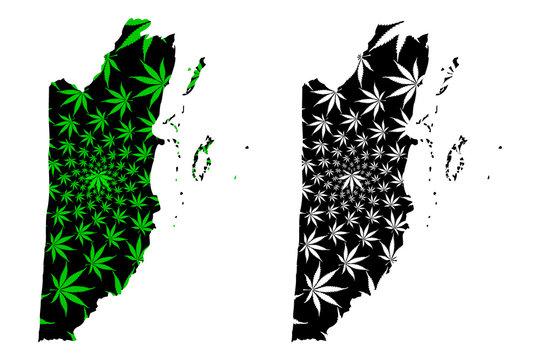 Belize - map is designed cannabis leaf green and black, Belize map made of marijuana (marihuana,THC) foliage,