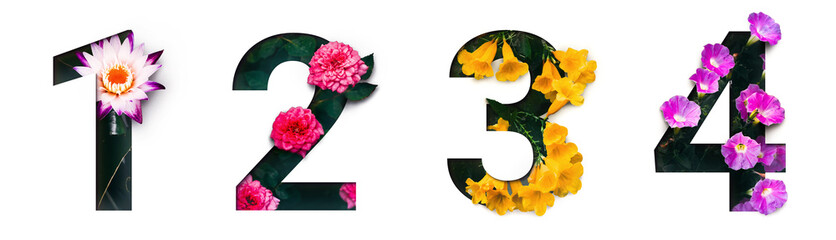 Flower font number 1, 2, 3, 4 Create with real alive flowers and Precious paper cut shape of Number. Collection of brilliant bloom flora font for your unique text, typography with many concept ideas Wall mural
