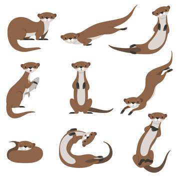 Cute otter set, funny animal character in various poses vector Illustration on a white background