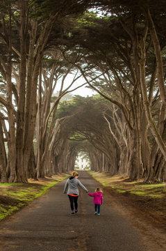 A mother and daughter walking together in a tree grove.