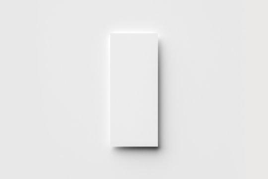 DL Flyer Mock-Up on soft gray background.3D rendering.