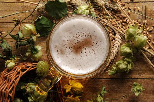 Birra e ingredienti ft6109_0211 Cerveza con ingredientes