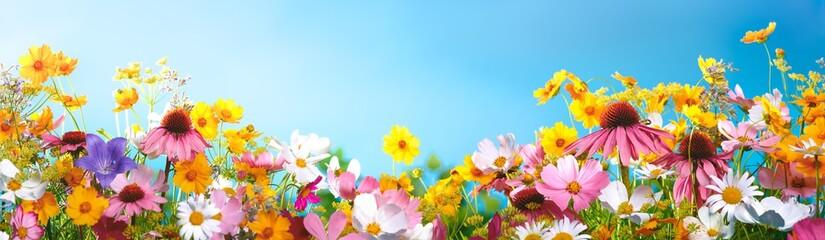 Printed kitchen splashbacks Floral Spring flowers