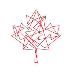 klonowy liść logo wektor