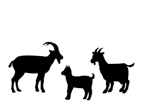 Goat goatling farm mammal black silhouette animal. Vector Illustrator.