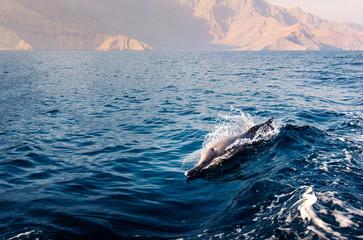 Deurstickers Dolfijn dolphin rising above crystal clear water