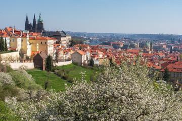 Prague - view on the city with Prague Castle