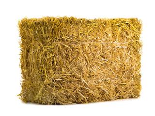 Fototapeta yellow dry barley straw obraz