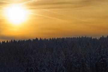 Amazing sunlight in a golden sky above forest in a winter
