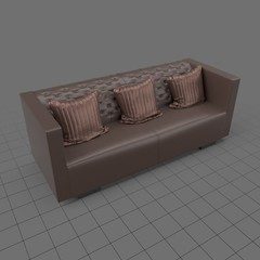 Modern sofa with cushions