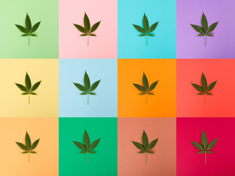 Cannabis Leaf Colorful Collage
