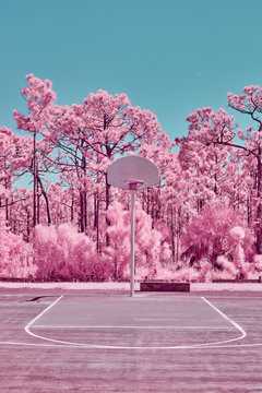 Surreal Basketball Court in Pink Infrared
