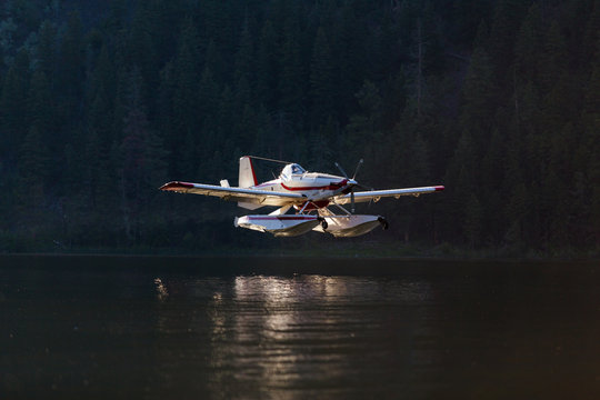 A forest fire fighting floatplane landing on a lake to fill it's tanks at sunset