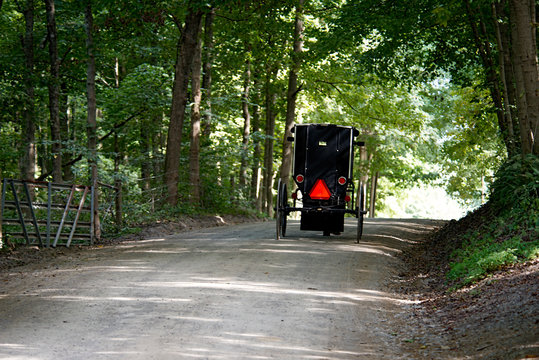Amish Buggy on Rural Gravel Road in Ohio