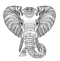 The head of an elephant. Meditation, coloring of the mandala. Large horns and long trunk. Elephant with tusks.  Background for text