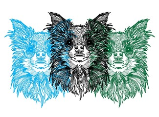 Foto op Canvas Hand getrokken schets van dieren The head of a Chihuahua dog. Meditation, coloring of the mandala.