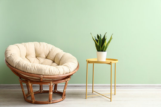 Lounge chair and table with plant near color wall in room
