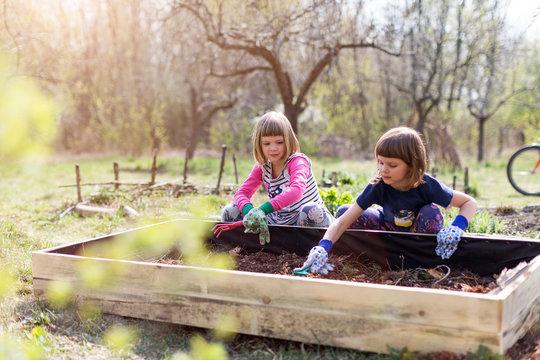 Two young girls gardening in urban community garden